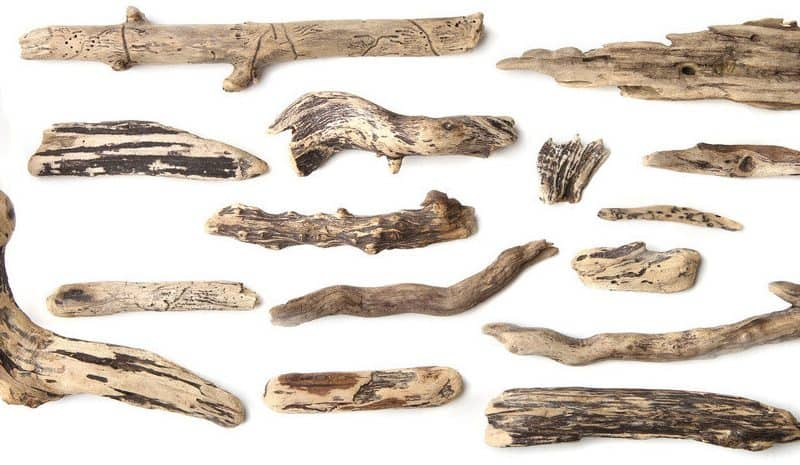 Which driftwood is ideal for Aquarium