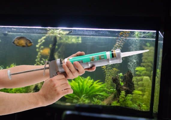 Silicone is used for fish tanks